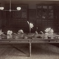 Table covered with tactile models of fruits and flowers for a botany lesson at Perkins Institution and Massachusetts School for the Blind, South Boston.