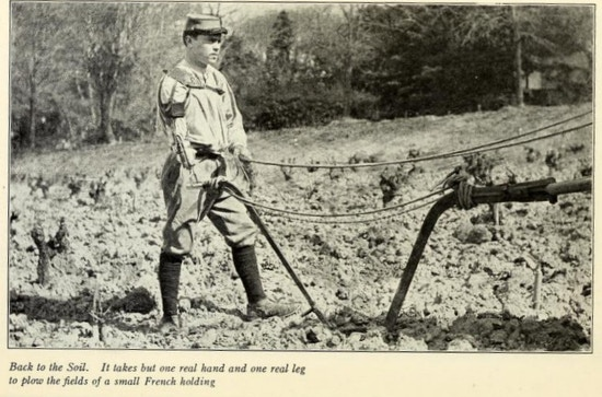 Man with prosthetic arm holds reins in a field plowing.